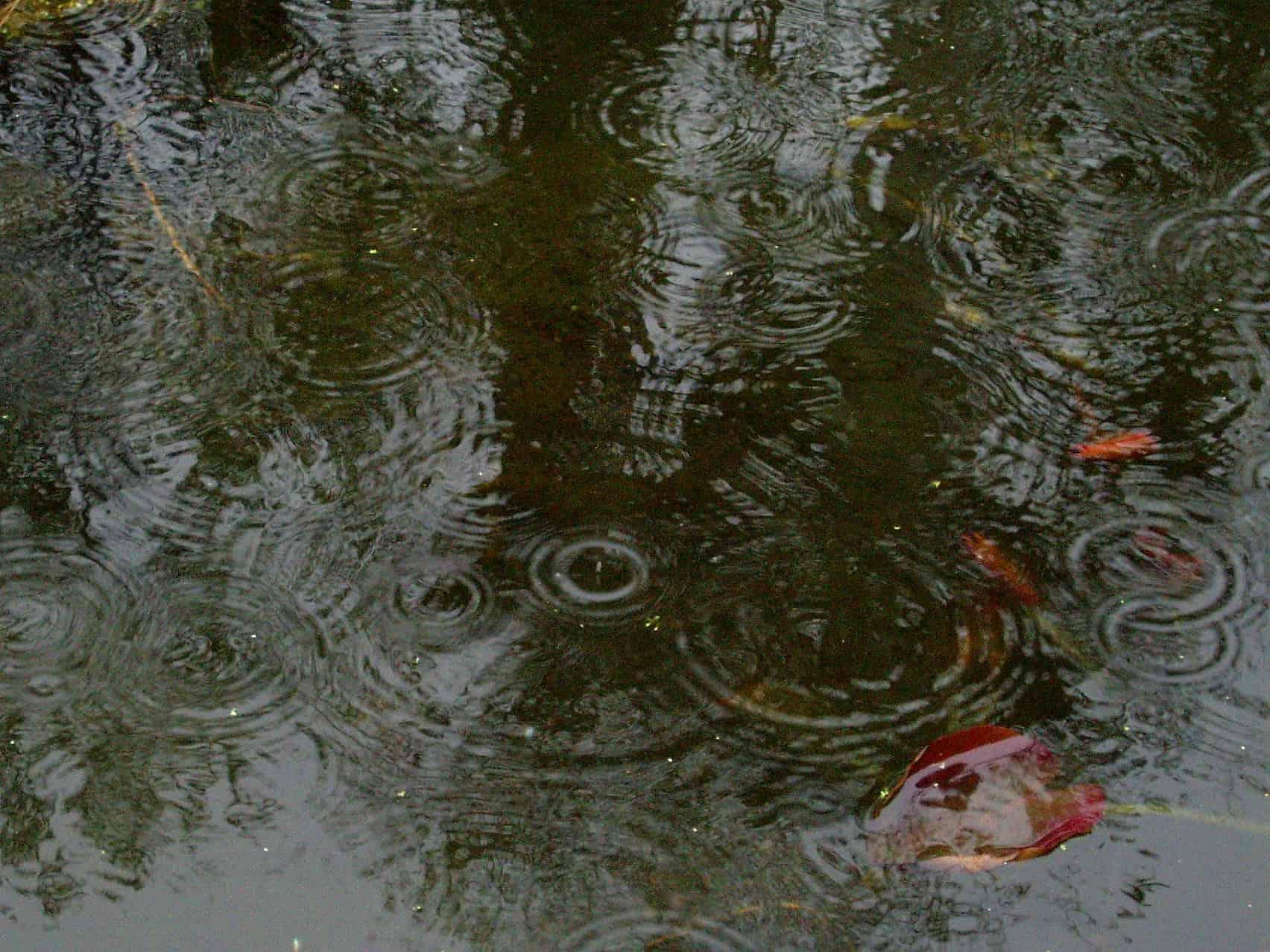 """Dimanche au soir, la région de Peshawar (nord-ouest du Pakistan) a été ciblée par des pluies diluviennes et des vents puissants pour ce qui s'apparente à un """"mini-cyclone"""", d'après un responsable météorologique local. Des toits de masures se sont effondrés, de même que des pylônes électriques, résultant en une coupure de courant à Peshawar. En […]"""