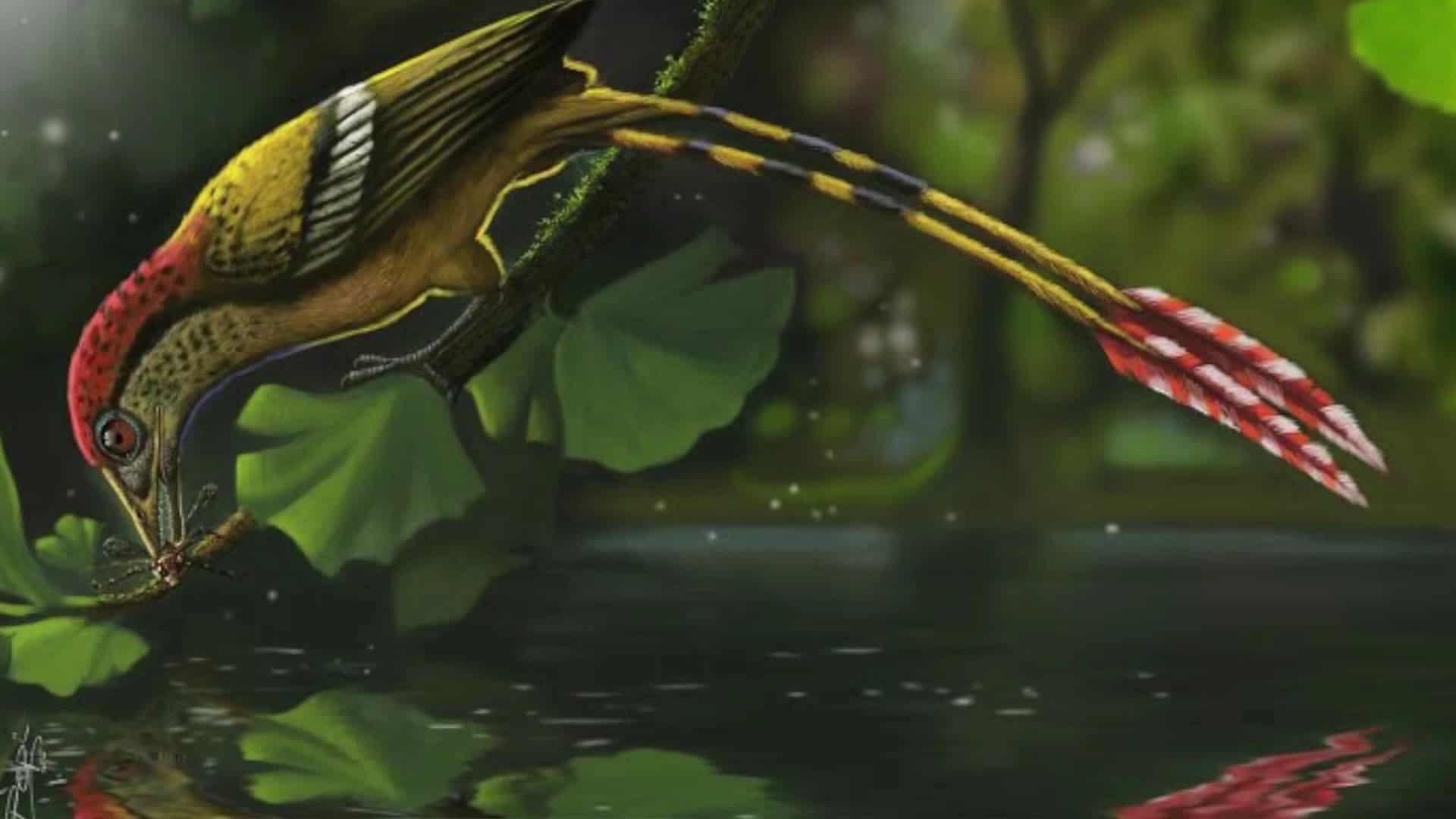 Oiseau préhistorique dont un fossile a été découvert au Brésil
