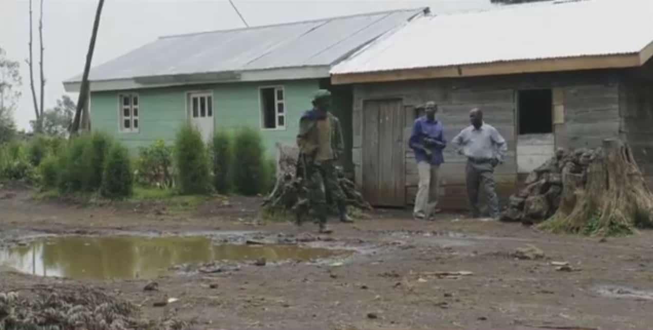 Province du Nord-Kivu, en République démocratique du Congo (RDC)