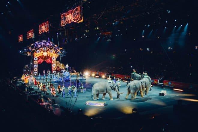 Une troupe d'artistes et des animaux de cirque. Image d'illustration.