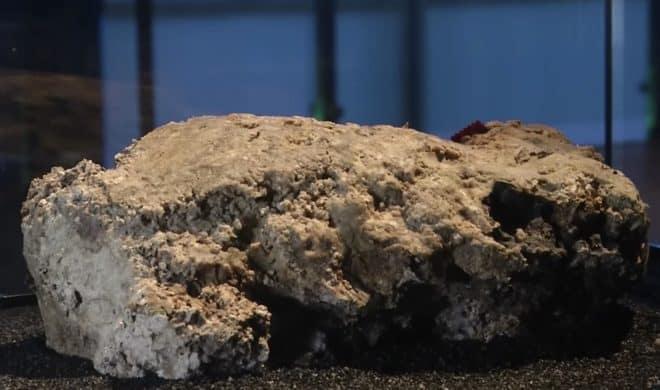 """Un fragment de """"fatberg"""", retrouvé dans les égouts londoniens en septembre dernier."""