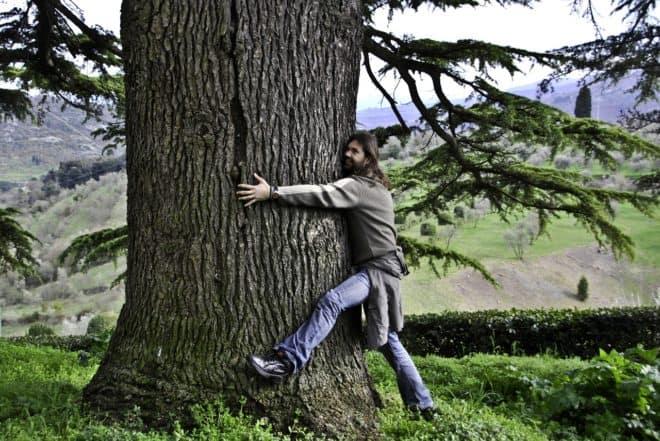 Un homme prenant un arbre dans ses bras. Image d'illustration.