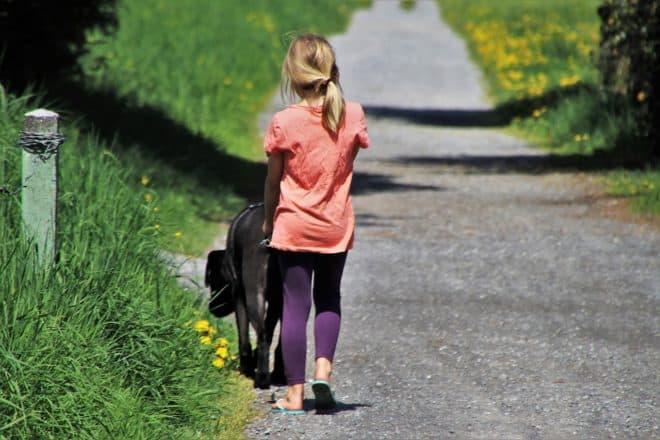Une fillette promenant un chien. Image d'illustration.