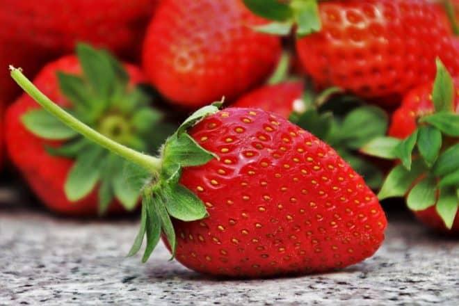 Des fraises. Images d'illustration.