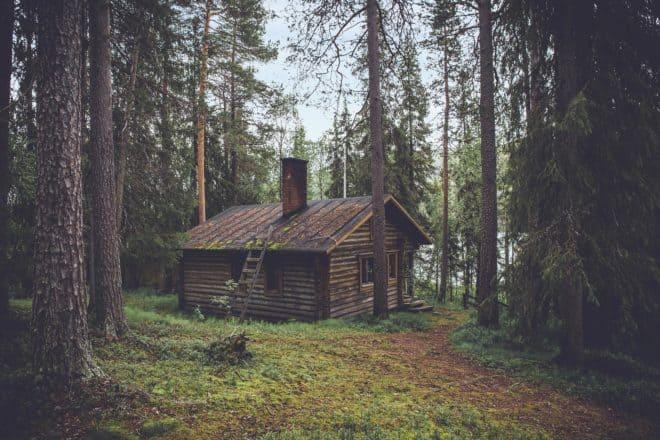 Illustration. Une cabane isolée dans les bois.