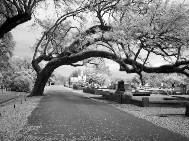 Photo d'illustration. Un cimetière.
