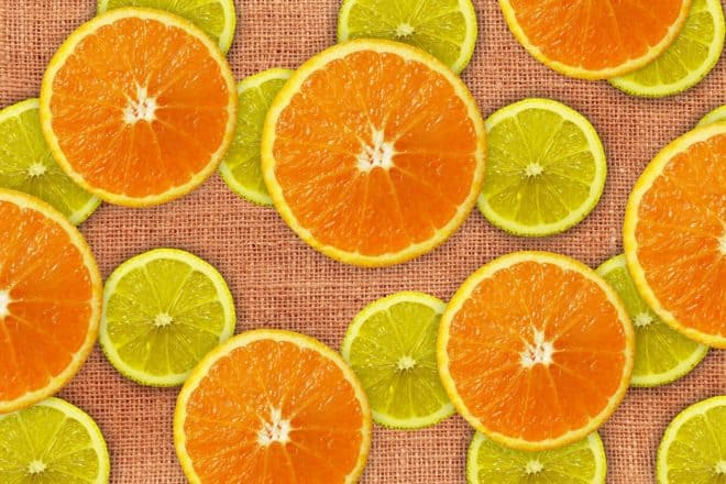Illustration. Tranches de citrons et d'oranges.