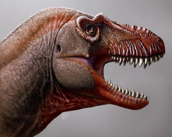 Thanatotheristes degrootorum, un ancêtre du T-Rex.